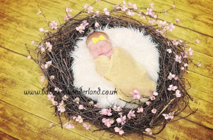 Newborn Photography Newcastle under Lyme and Stoke on Trent | Newborn| Baby Harriet